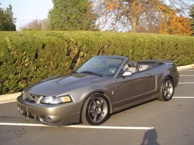 2003 ford mustang 2003 ford mustang cobra convertible for sale to purchase or buy classic. Black Bedroom Furniture Sets. Home Design Ideas