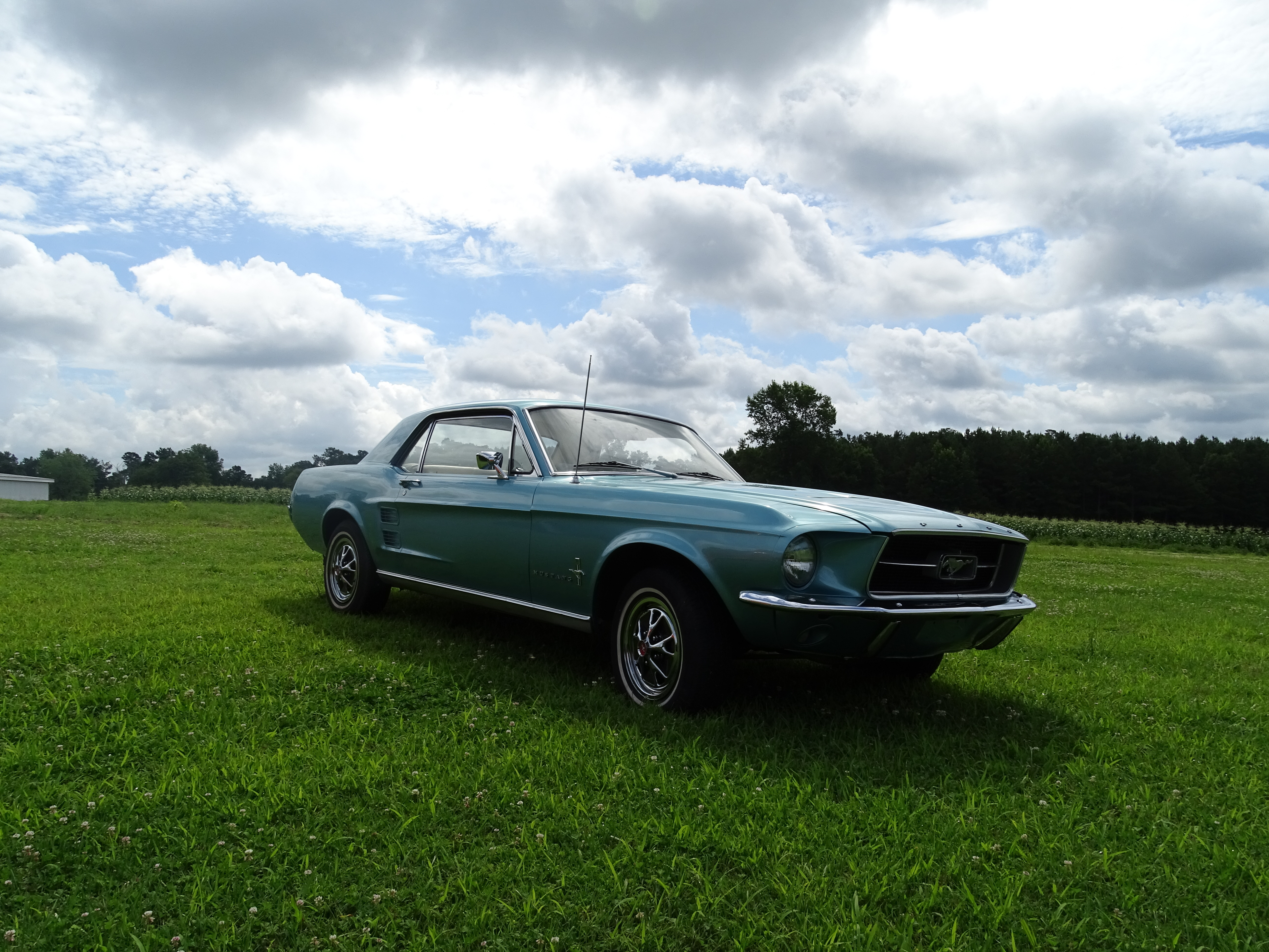 1967 ford mustang gaa classic cars. Black Bedroom Furniture Sets. Home Design Ideas