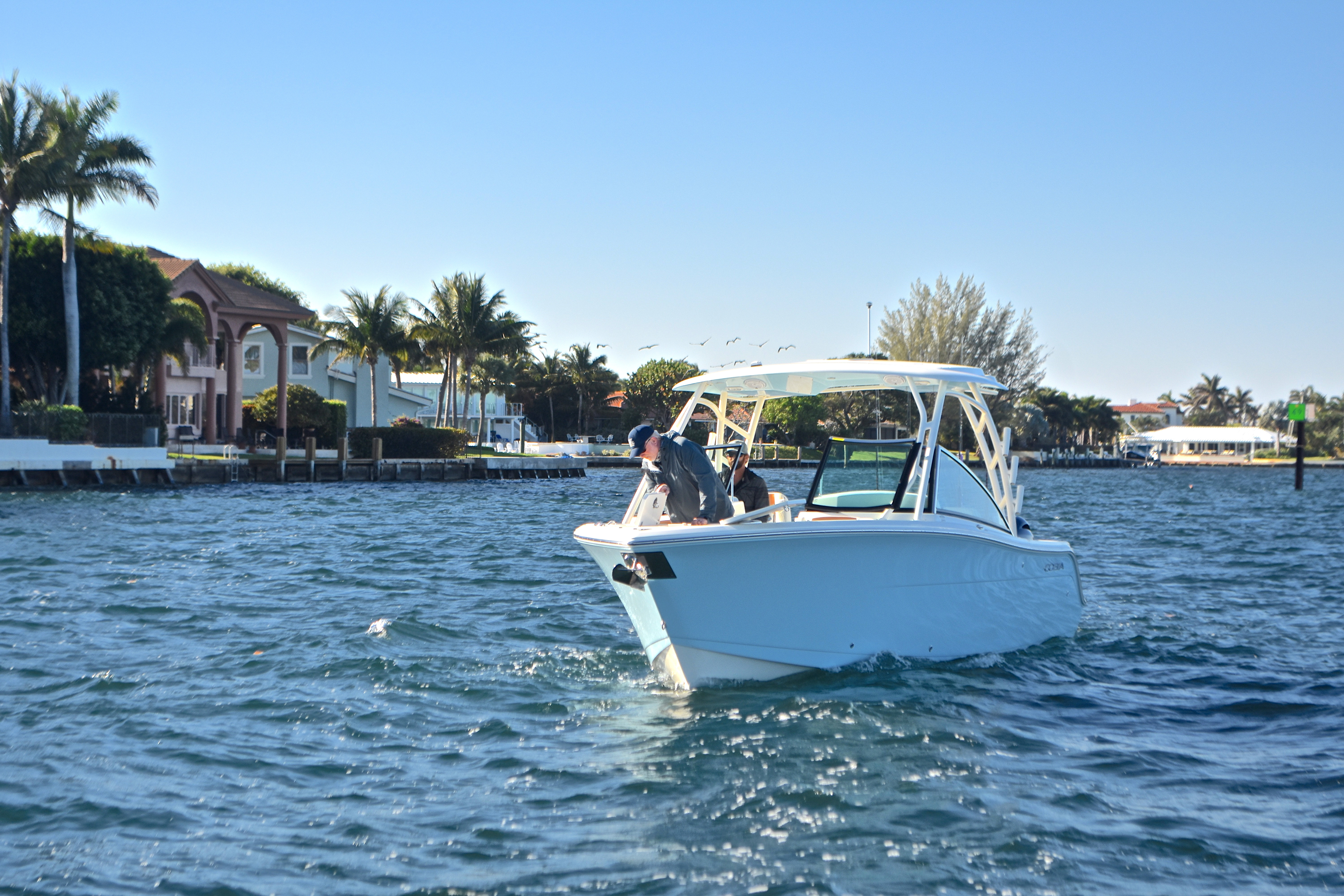 Thumbnail 21 for New 2017 Cobia 280 DC Dual Console boat for sale in West Palm Beach, FL