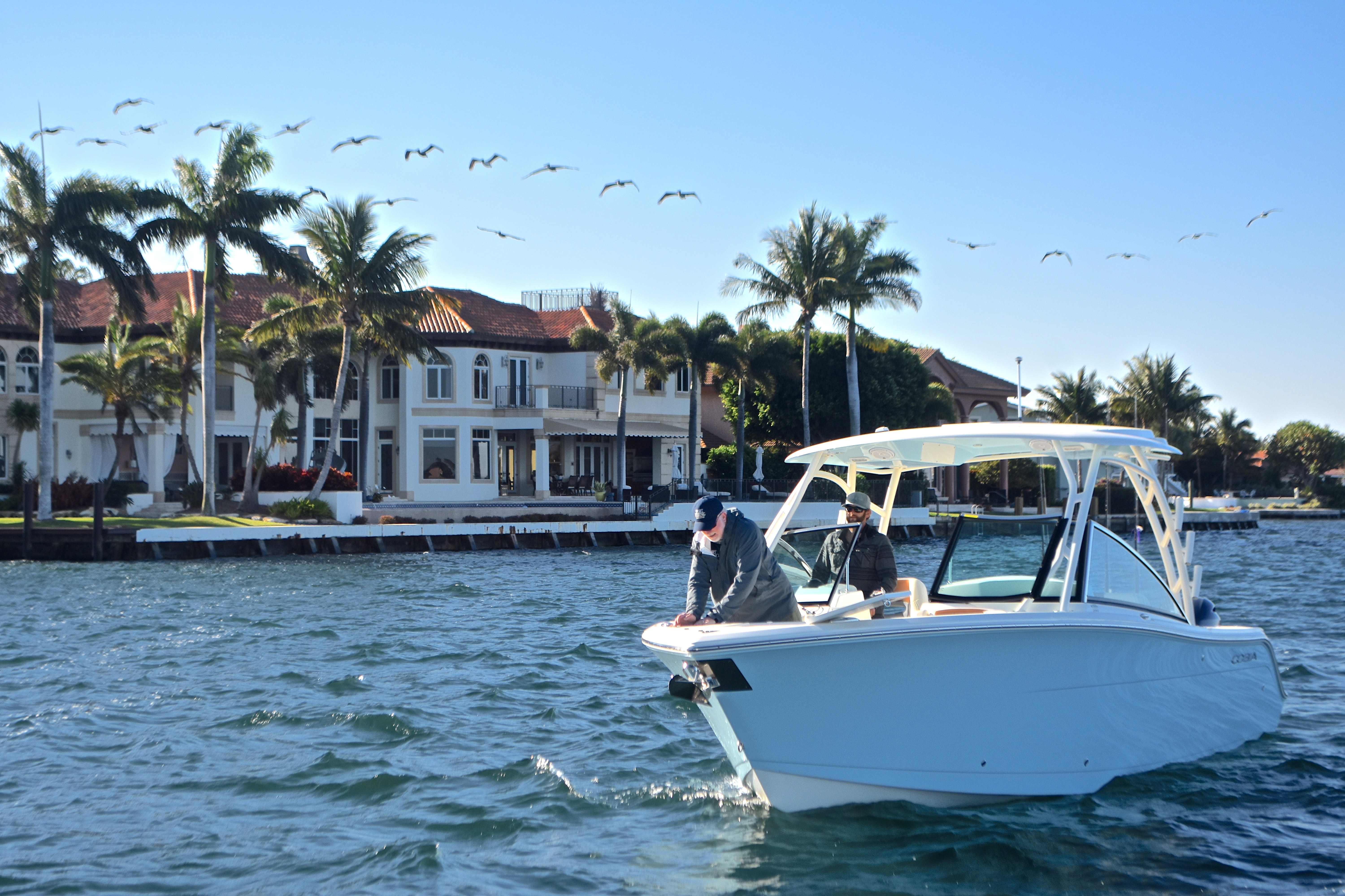 Thumbnail 2 for New 2017 Cobia 280 DC Dual Console boat for sale in West Palm Beach, FL