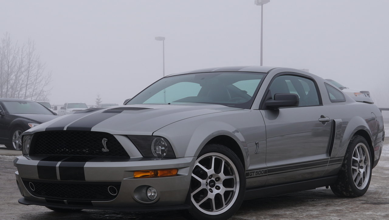 541866bedf6f hd 2008 ford mustang shelby gt500