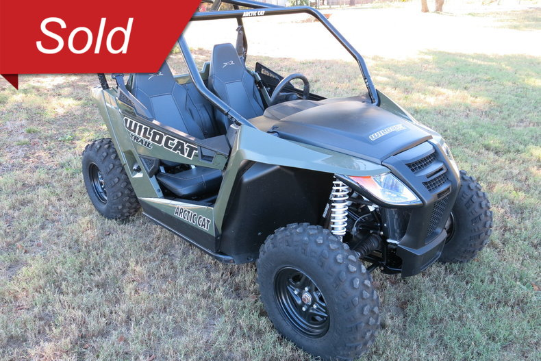 2014 Arctic cat Wild cat Trail