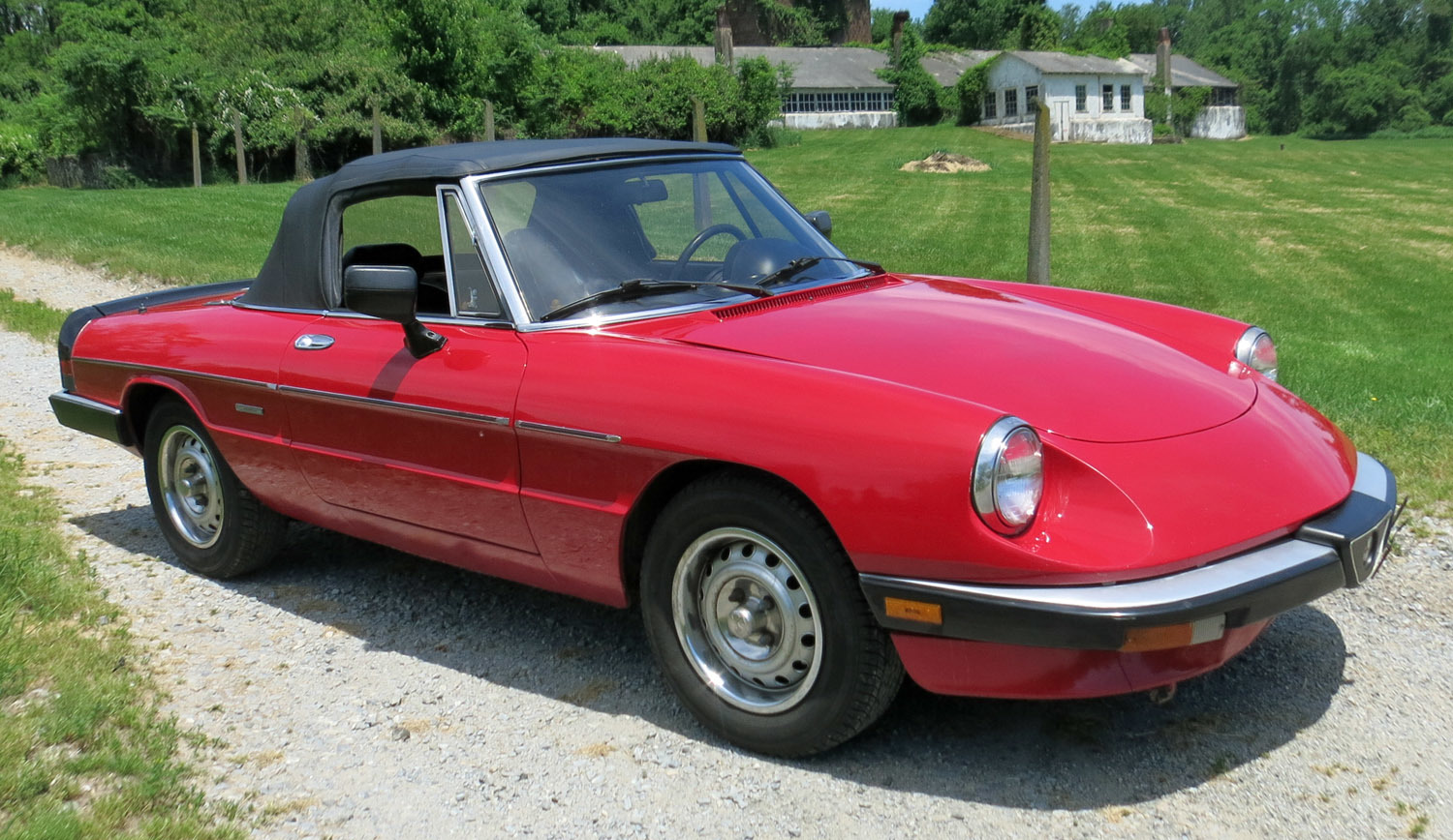 1986 alfa romeo spider connors motorcar company. Black Bedroom Furniture Sets. Home Design Ideas