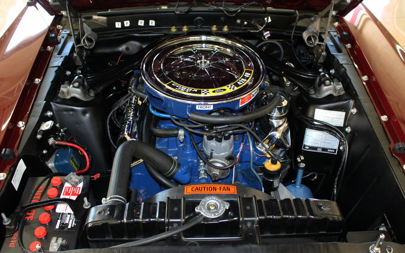 Image Result For Mustang Mach E