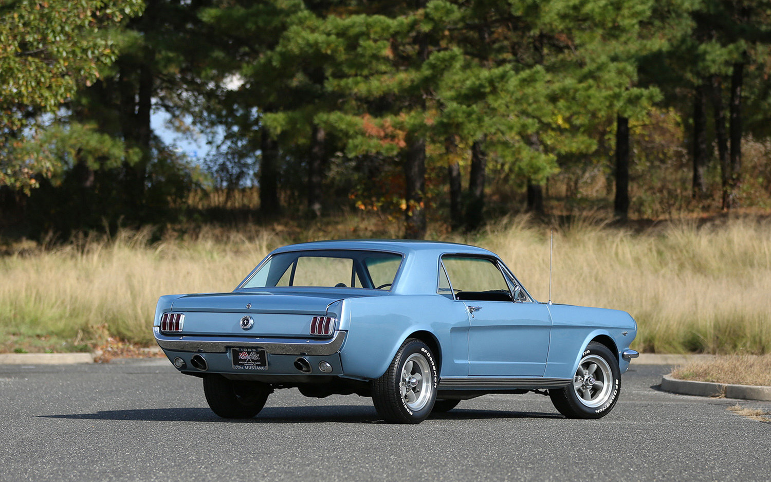 1965 Ford Mustang Future Classics
