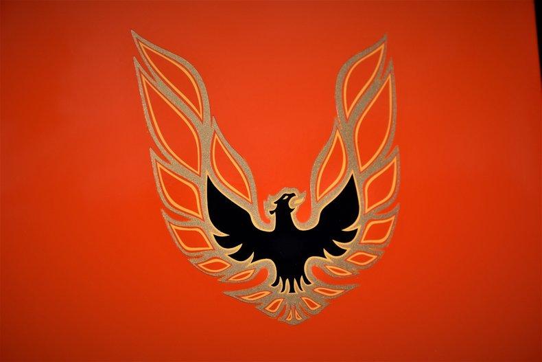 170762e3089b low res 1976 pontiac firebird