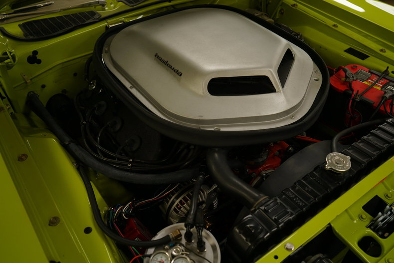 12481eda9adf4 low res ford mustang barricuda