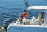 Thumbnail 4 for New 2015 Sailfish 270 CC Center Console boat for sale in West Palm Beach, FL