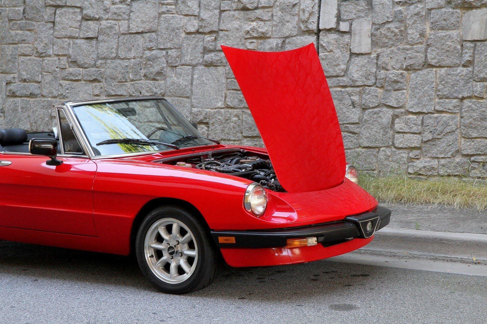 Ed D Hd Alfa Romeo Graduate on Panasport S For Alfa Romeo Spider