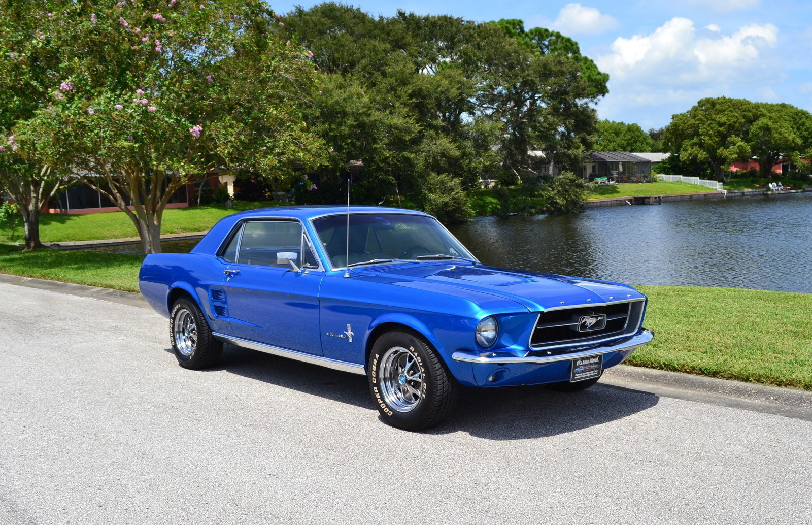 1967 Ford Mustang For Sale 100487 Mcg