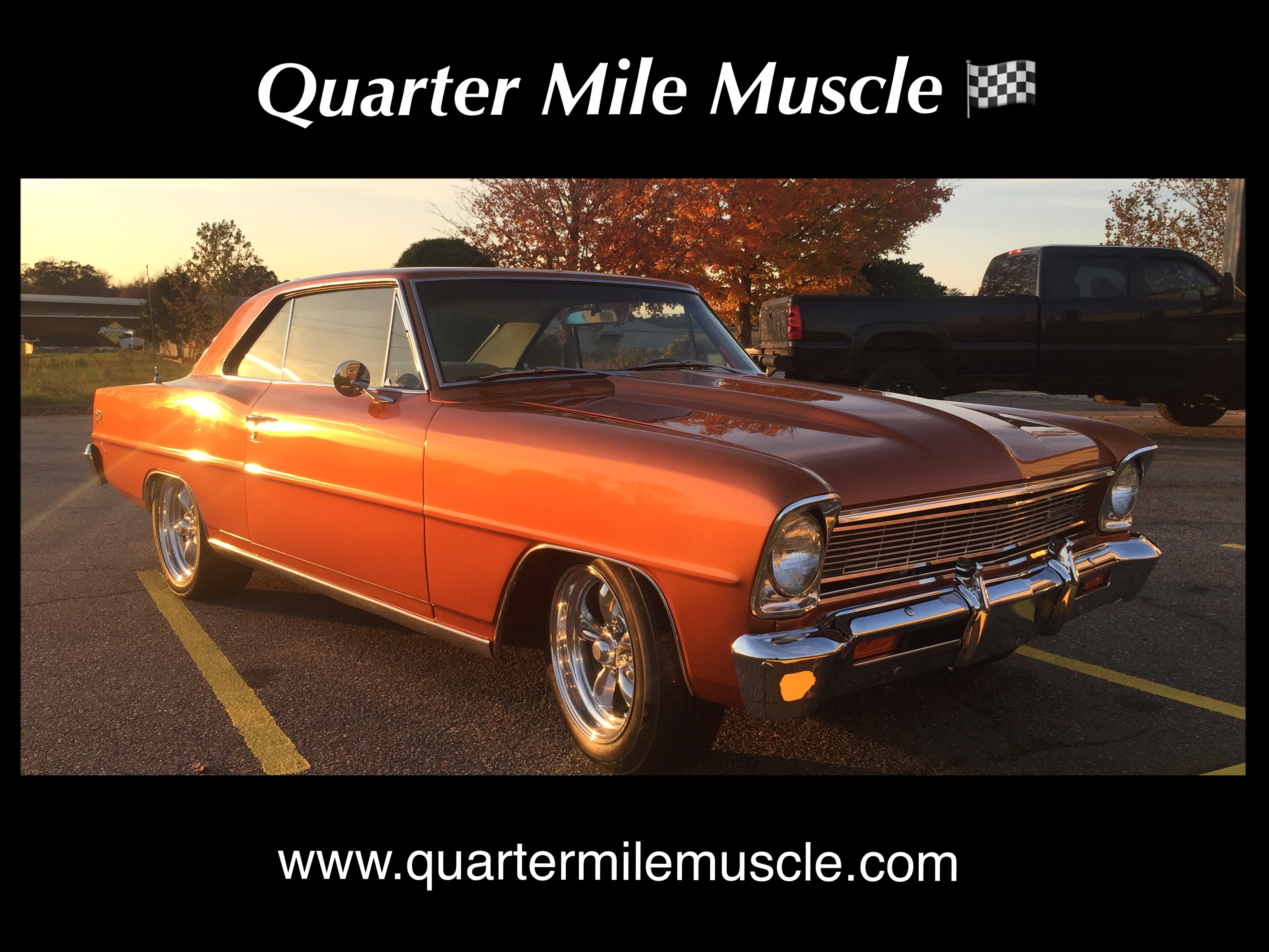 Quarter Mile Muscle Inc. | Quarter Mile Muscle Inc.