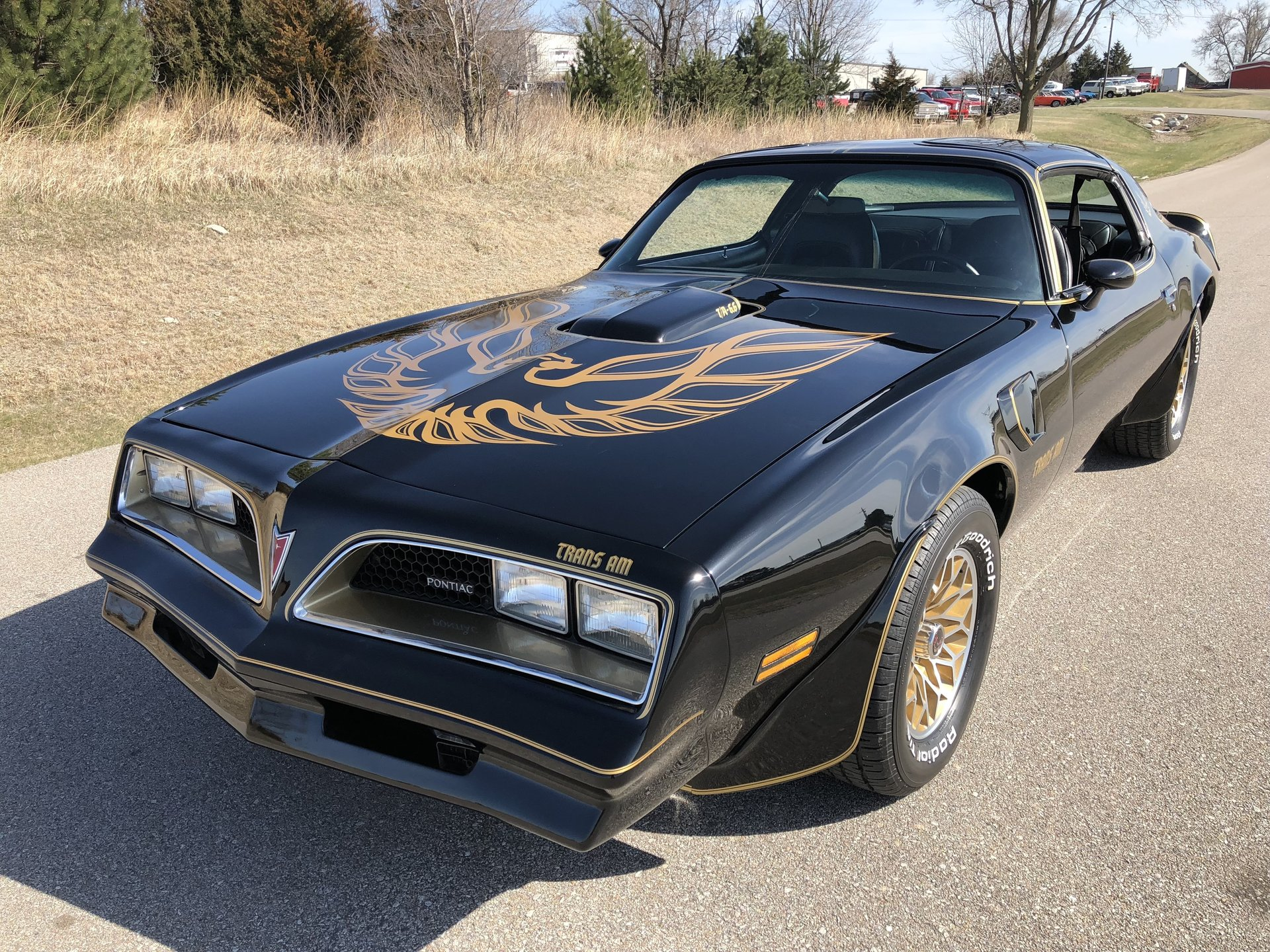 1977 trans am bandit edition-3514