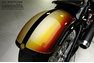 For Sale 2008 Roland Sands Design Softail