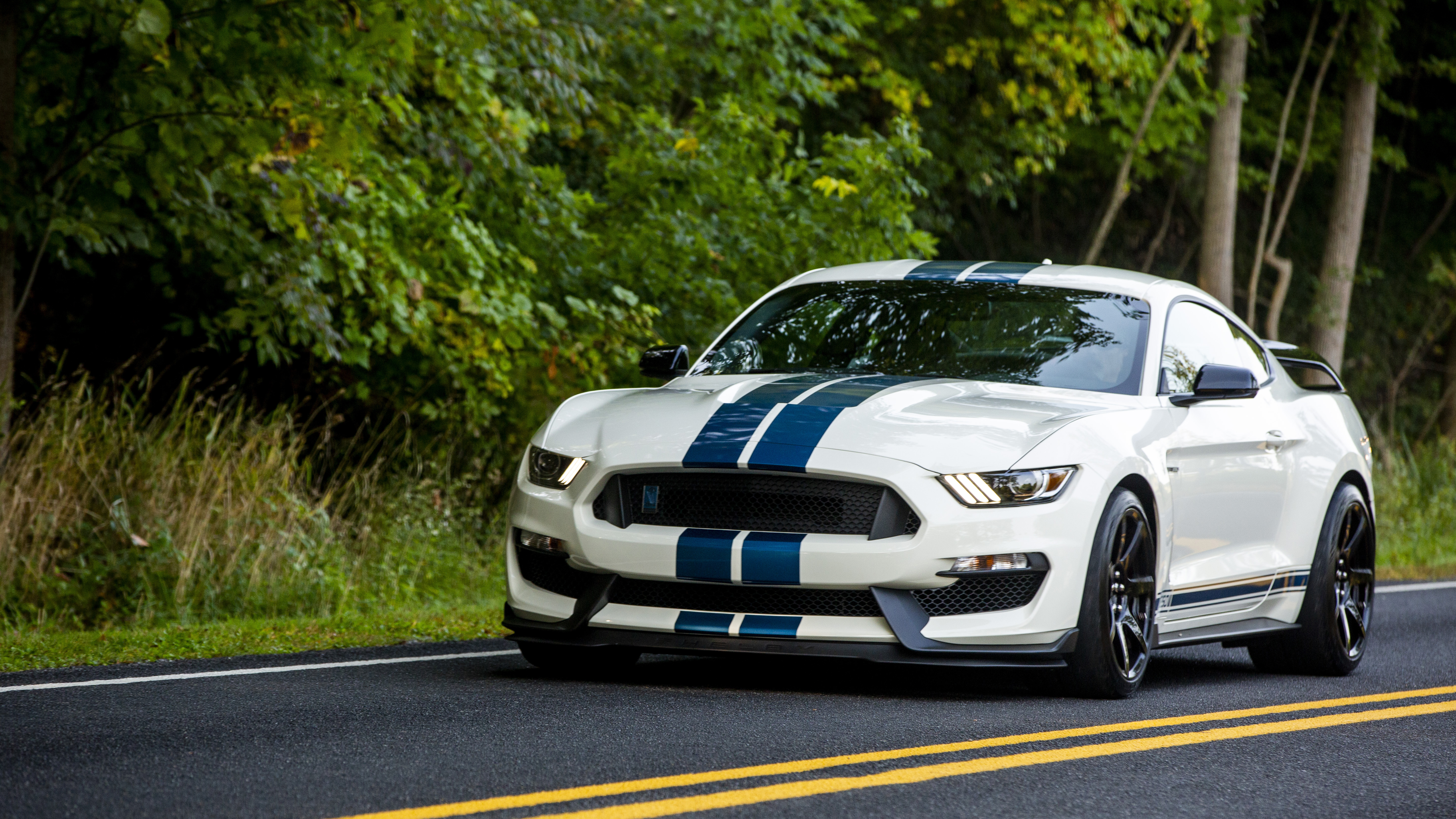 2020 Ford Mustang Shelby GT350R Heritage Edition -- Image Credit: Ford