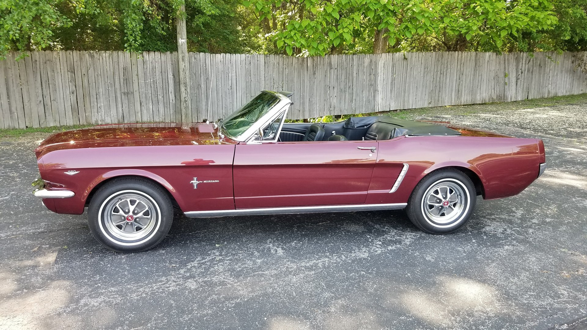 1965 Ford Mustang Rock Solid Motorsports 1964 Convertible