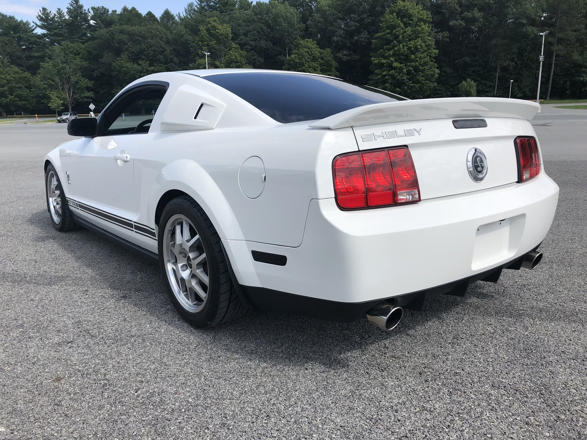 2009 ford mustang gt 500 saratoga auto auction. Black Bedroom Furniture Sets. Home Design Ideas