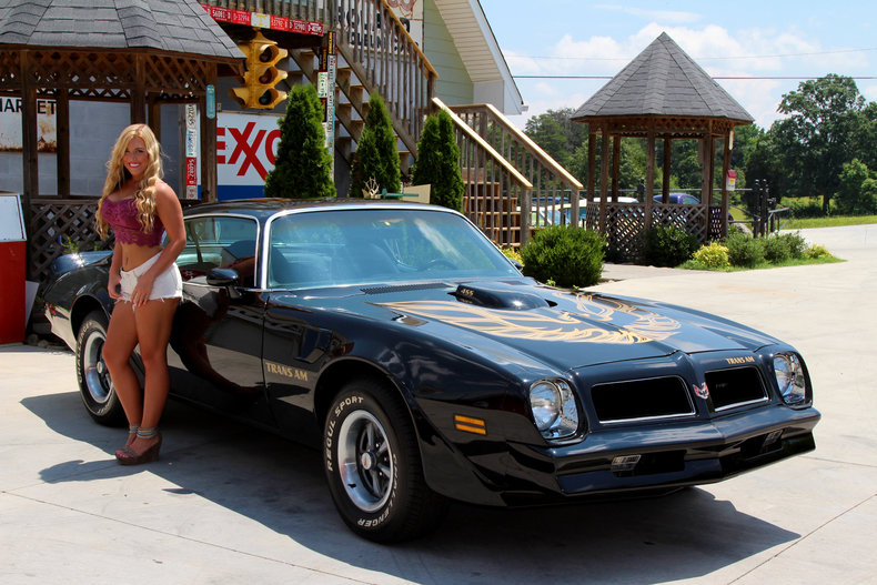 1976 pontiac trans am for sale 27083 mcg. Black Bedroom Furniture Sets. Home Design Ideas