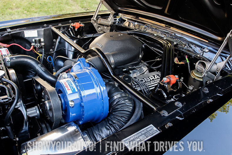 1966 1966 Shelby GT350 For Sale