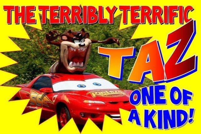 0 Taz Lightning