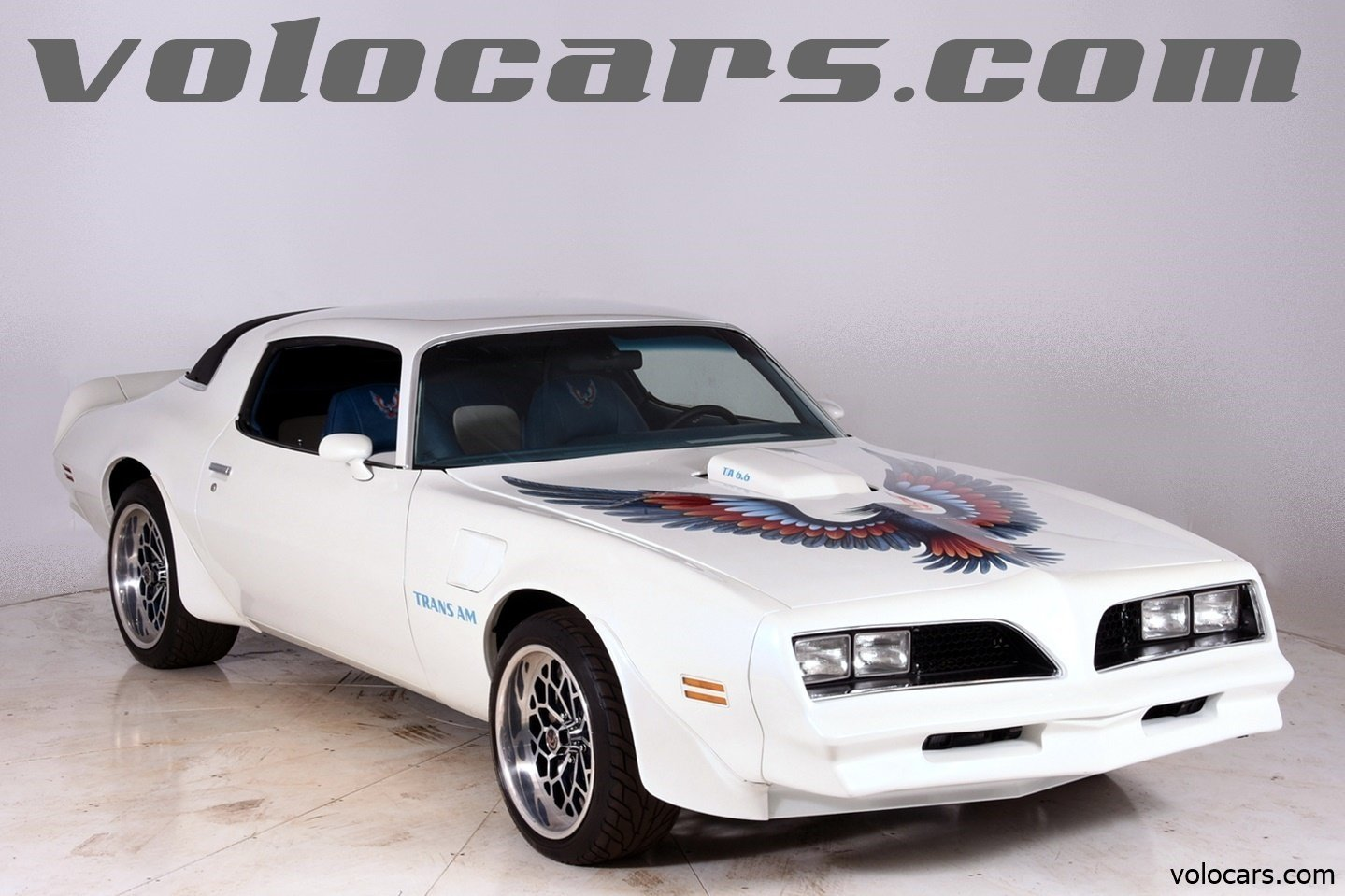 3338320f35dce7 hd 1977 pontiac trans am